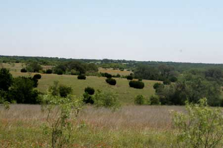 Land For Sale In Weatherford Tx >> Land For Sale In Weatherford TX - Coalson Real Estate